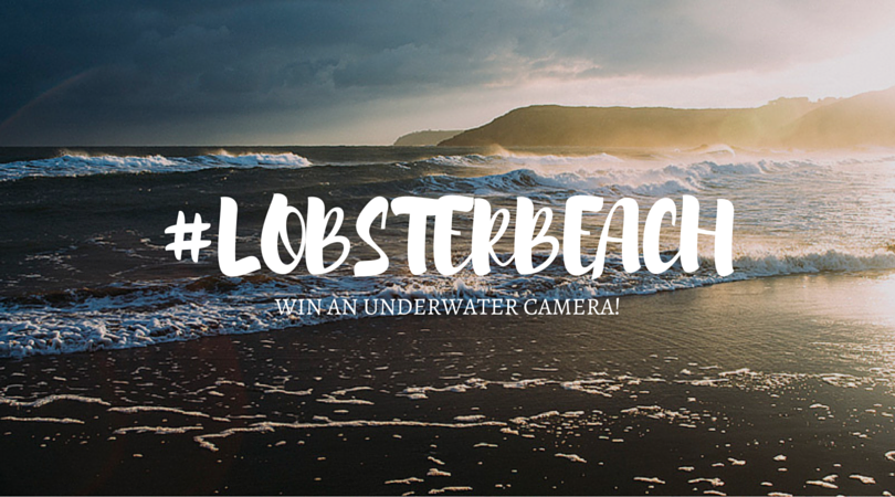 #LobsterBeach – Share Your Beach Photos And Get Rewarded!