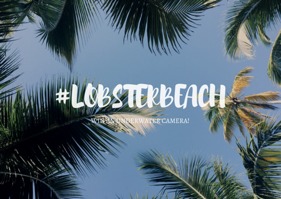 Join Our #LobsterBeach competition!