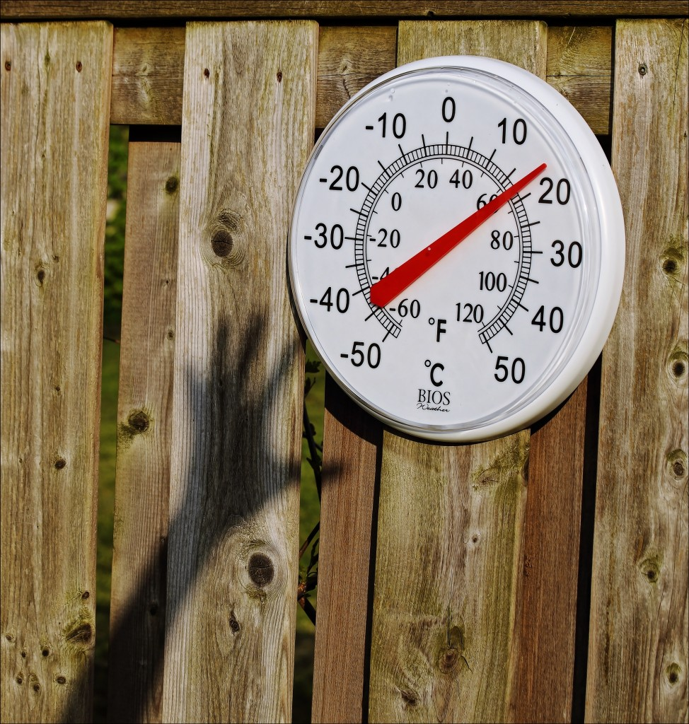 thermometer article 7